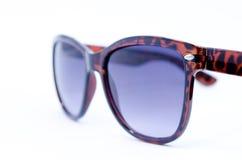 Sonnenbrille Lizenzfreie Stockfotografie