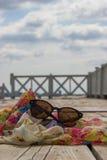 Sonnenbrille, Buch und Schal Lizenzfreie Stockbilder