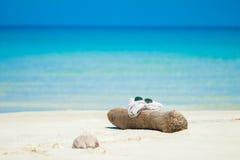 Sonnenbrille stellte auf einen hölzernen Stock auf dem Strand ein Meer und Ozean während des Sommers Lizenzfreies Stockfoto