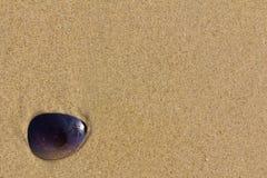 Sonnenbrillefelder auf Strand lizenzfreies stockfoto