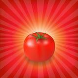 Sonnendurchbruch-Hintergrund mit roter Tomate Stockbilder