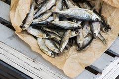Sonnengetrocknete Fische Vorrat-Fische auf dem braunen Papier lizenzfreie stockfotos