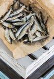 Sonnengetrocknete salzige Fische Vorrat-Fische auf der Kiste Lizenzfreie Stockfotografie