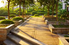 Sonnenlicht über Garten Stockfotografie