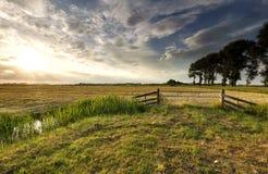 Sonnenlicht über niederländischem Ackerland im Sommer lizenzfreies stockfoto