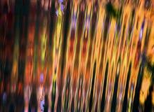 Sonnenlicht, das über Teich-Kräuselungen nachdenkt Lizenzfreie Stockfotos
