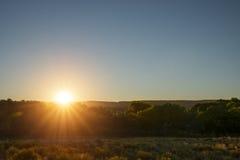 Sonnenlicht morgens Stockfotos