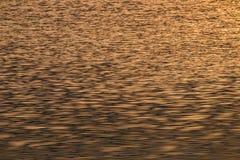 Sonnenlicht-Reflexion im Flussschwarzweiss-Ton Stockfotos