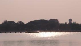 Sonnenlichtbewegung auf Sumpf stock video footage