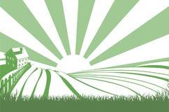 Sonnenschein über Hügel-Feldern Stockbilder