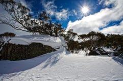 Sonnenschein über schneebedeckter Landschaft Lizenzfreie Stockbilder