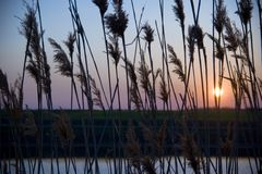 Sonnenschein über See Stockbilder