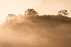 Sonnenschein auf Nebel und Spitze des Berges im orange Ton Stockbilder