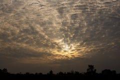Sonnenschein der Wolke und des blauen Himmels strahlt mit Sonnenuntergang auf Baumschattenbild Lizenzfreie Stockfotos