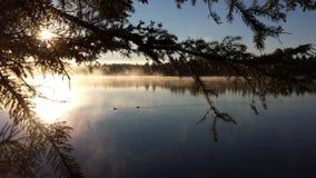 Sonnenschein durch die Bäume auf dem See Lizenzfreies Stockfoto