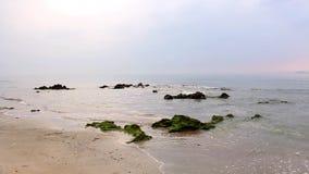 Sonnenschein morgens mit Seeweiche bewegt wellenartig und schaukelt in das Meer stock footage