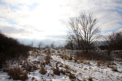 Sonnenschein nach Schneefällen Lizenzfreies Stockfoto