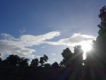 Sonnenschein-Strahln-Bruch durch Anlagen und Bäume Lizenzfreies Stockbild