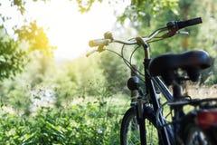 Sonnenschein und stehendes Fahrrad an der Natur Lizenzfreie Stockbilder