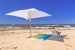 Sonnenschirm und Hund auf dem Strand von Ostsee Lizenzfreies Stockfoto