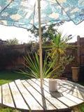 Sonnenschutz-Regenschirm und wärmen Getränk Lizenzfreies Stockfoto