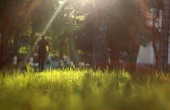 Sonnenstaub Stockbild