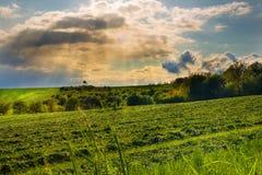 Sonnenstrahlen und Feld mit geschnittenem Gras Lizenzfreies Stockfoto