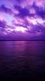 Sonnenuntergänge im tiefen Süden Stockbild
