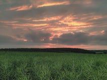 Sonnenuntergang über Ackerland Lizenzfreie Stockbilder