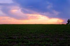Sonnenuntergang über afrikanischem Bauernhof nach Sturm Lizenzfreie Stockfotografie