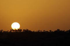 Sonnenuntergang über afrikanischer Landschaft Stockfotografie