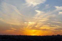 Sonnenuntergang über Baum gezeichnetem Horizont Stockbilder
