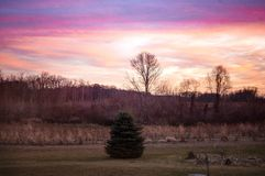Sonnenuntergang über dem Bauernhof Stockfotografie