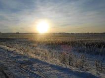 Sonnenuntergang über dem eisigen Feld Stockbilder