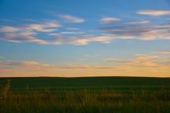 Sonnenuntergang über dem Feld in der russischen Landschaft stockbilder