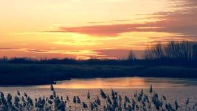 Sonnenuntergang über dem See und dem Wald, Video 4K stock video