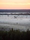 Sonnenuntergang über dem Wald im Nebel Lizenzfreie Stockfotografie