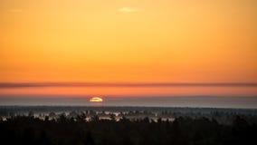 Sonnenuntergang über dem Wald im Nebel Lizenzfreie Stockbilder
