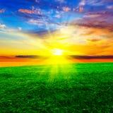 Sonnenuntergang über dem Weizen-Feld Lizenzfreies Stockfoto
