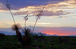 Sonnenuntergang über den Bergen in der Wüste Stockfoto