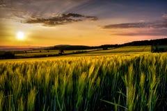 Sonnenuntergang über den Städten und dem Feld Lizenzfreie Stockfotos