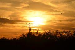 Sonnenuntergang über der Ranch lizenzfreies stockbild