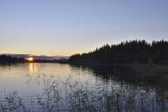 Sonnenuntergang über einem See mit Meerespflanze im Vordergrund Stockbilder