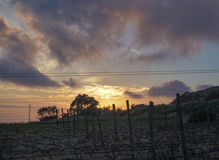 Sonnenuntergang über einer Wiese genommen bei Fawwara, Malta Lizenzfreie Stockfotos