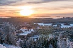 Sonnenuntergang über eisigem Winterwald Stockfotografie