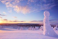 Sonnenuntergang über gefrorenen Bäumen auf einem Berg, Levi, finnisches Lappland Lizenzfreies Stockbild