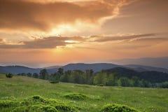 Sonnenuntergang über grünem Feld Stockfotografie