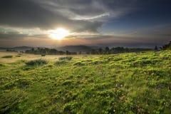 Sonnenuntergang über grünem Feld Stockbild
