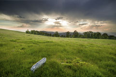 Sonnenuntergang über grünem Feld Stockfotos