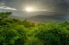 Sonnenuntergang über grünen Hügeln, sonnige Landschaft Stockfotografie